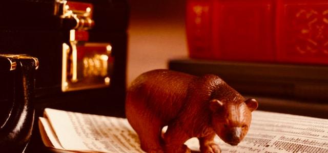 Bear Market (1)